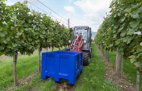 Weingut Jamek in der Wachau